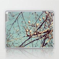 Mountain Nature Laptop & iPad Skin