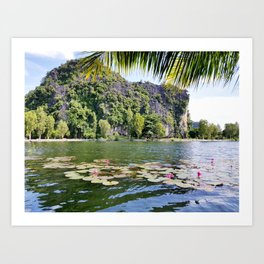 Water lilies in a pond next to Vietnam famous crust cliffs in Tam Coc Art Print