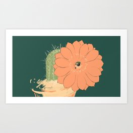 Cactus (3) in bloom Art Print