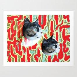 Cuca the Cat Art Print