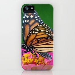 Regal Monarch iPhone Case