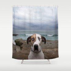 Great Dane Shower Curtain