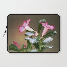 Spade's Desert Rose Laptop Sleeve