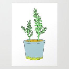 Sedum Art Print