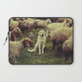 Herding dog, male, south of Israel, scaned sx-70 Polaroid Laptop Sleeve