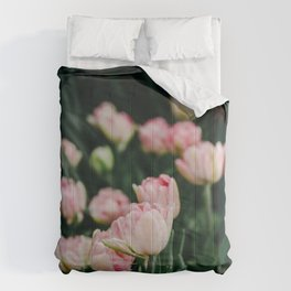 Blush Tulips By The Dozen Comforters