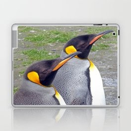 King Penguin Heads Laptop & iPad Skin