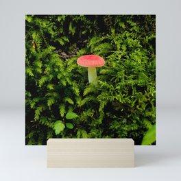 Lonely Mushroom Mini Art Print