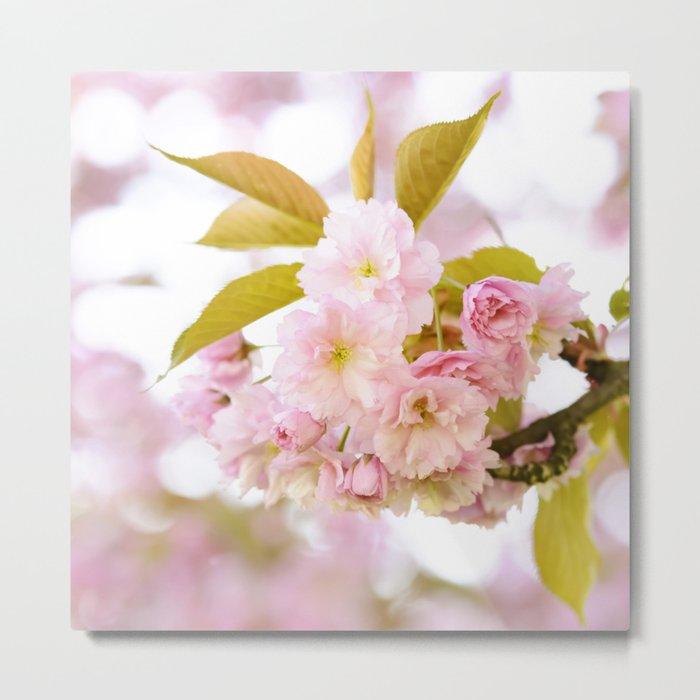 Sakura - Cherryblossom - Cherry blossom - Pink flowers on #Society6 Metal Print