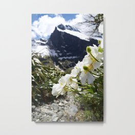 White Flowers and Mountain Pass (Milford Sound) Metal Print