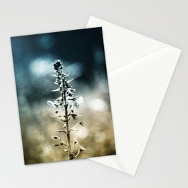 Ametrin Stationery Cards