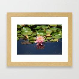 Pink & Green Framed Art Print
