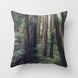The Redwoods at Muir Woods Throw Pillow