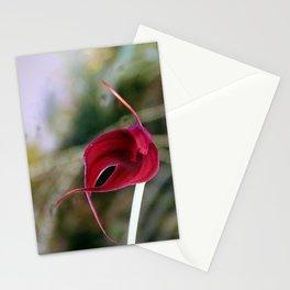A Misty Masdevallia Stationery Cards