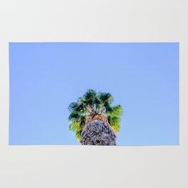 Lone Palm Tree Marrakech Morroco Rug