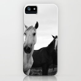 horse by Advan Shumiski iPhone Case
