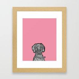 The Pinkest of the Great Dane Framed Art Print