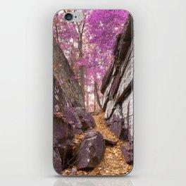 Gettysburg Grotto - Lavender Fantasy iPhone Skin