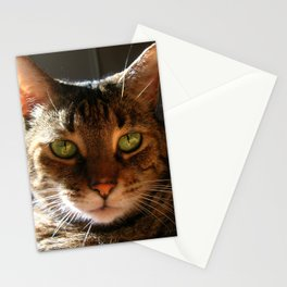Marley the Mackerel Tabby Cat with Intense Green Eyes Stationery Cards