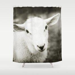 Lamb Sheep Shower Curtain