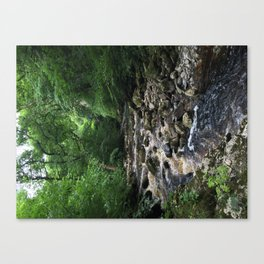 River side Canvas Print