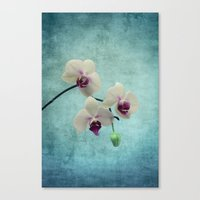 orchid Canvas Prints featuring Orchid by KunstFabrik_StaticMovement Manu Jobst