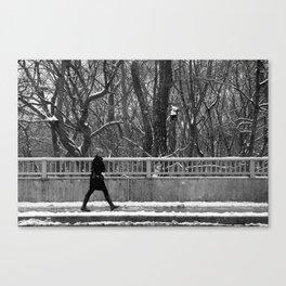 rosedale valley walk Canvas Print