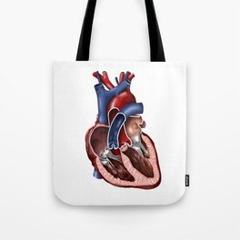 Cross section of human heart. Tote Bag