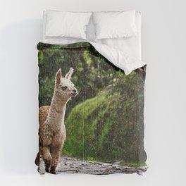 Llama 02 Comforters