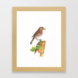 Robin on wooden post. Framed Art Print