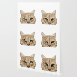 Golden British shorthair, America shorthair, cat, acrylic illustration by miart Wallpaper