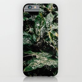 Sri Lankan Flora iPhone Case