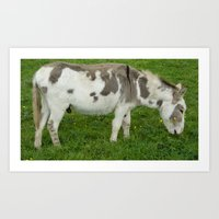 donkey Art Prints featuring Donkey by Imager