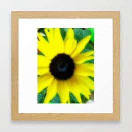Remembering days of summer- Sunflower Framed Art Print