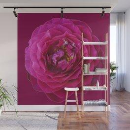 """""""BLUE YONDER"""" MAGENTA ROSE  MAGENTA COLOR ART Wall Mural"""