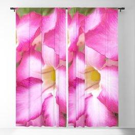 Mekong Delta Flora Blackout Curtain