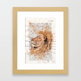 073 - Lion Framed Art Print