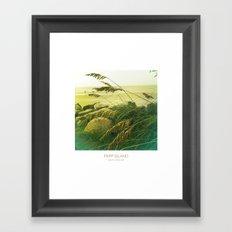 Beach Grass - Fripp Island, South Carolina Framed Art Print