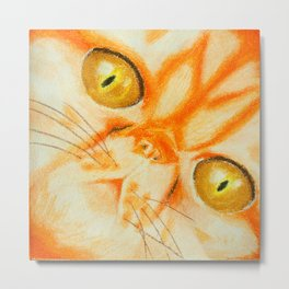 Persian Kitty Metal Print