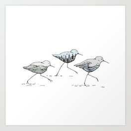 """ Shorebirds "" Art Print"