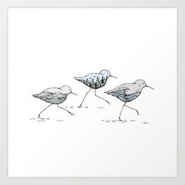 """"""" Shorebirds """" Art Print"""