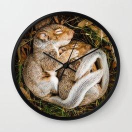 Two baby squirrels cuddling as they sleep Wall Clock