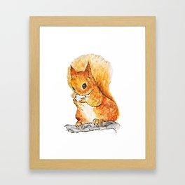 Squirrel Nutkin Peter Rabbit  Beatrix Potter Framed Art Print