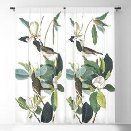 Warbling flycatcher, Birds of America, Audubon Plate 118 Blackout Curtain