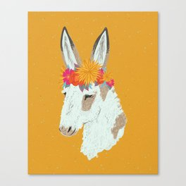 Penelope the Pinto Donkey Canvas Print