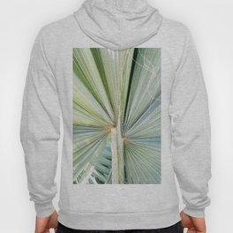 Fanned Palms Hoody