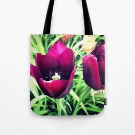 Purple Tulips in Bloom Tote Bag