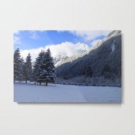 Alpine Winterscene Metal Print