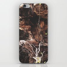 Root Of It All iPhone & iPod Skin