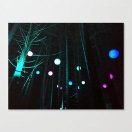 Vallea Lumina Canvas Print